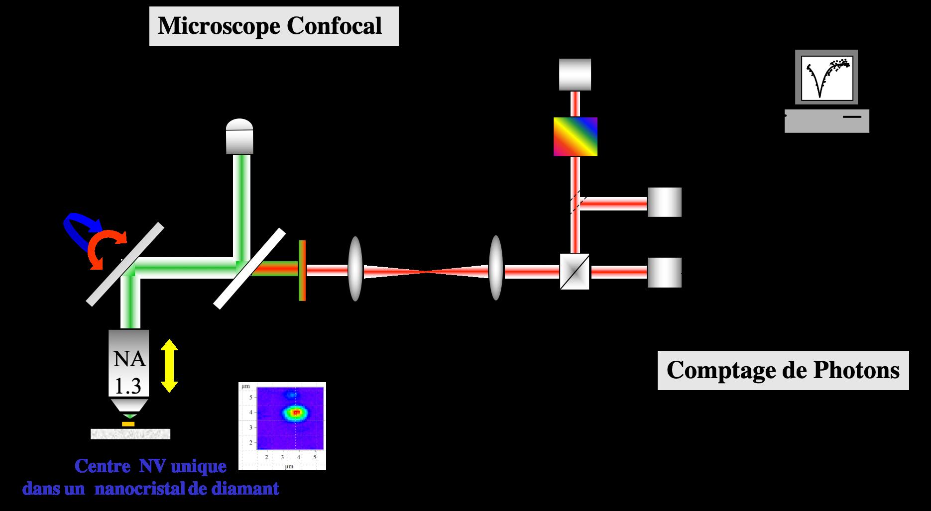 PIMS 04 • Optique quantique